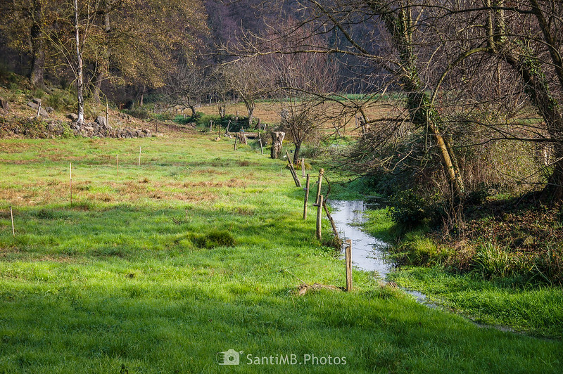 El Verlets cruzando el Pla de Gibrella en Sant Joan les Fonts