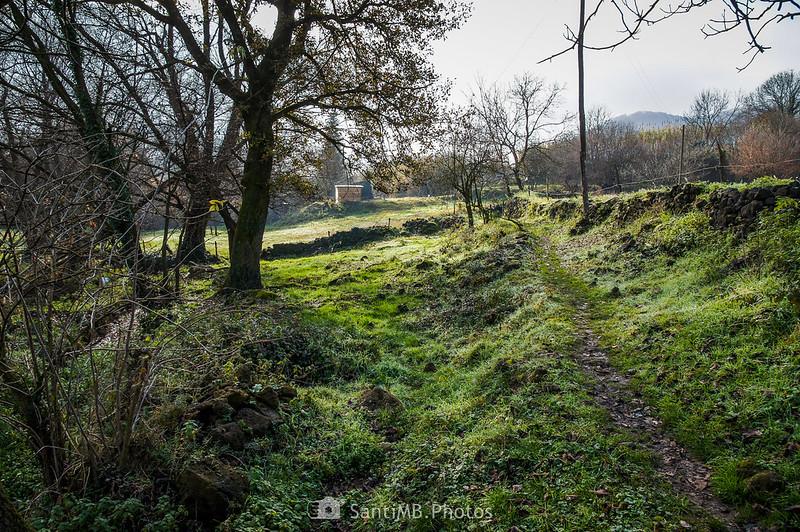 Camino de la Font de Fontfreda