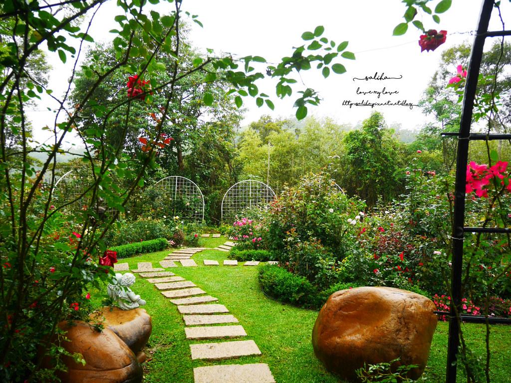 苗栗三義雅聞香草植物工廠好玩好拍親子景點夢幻花園 (6)