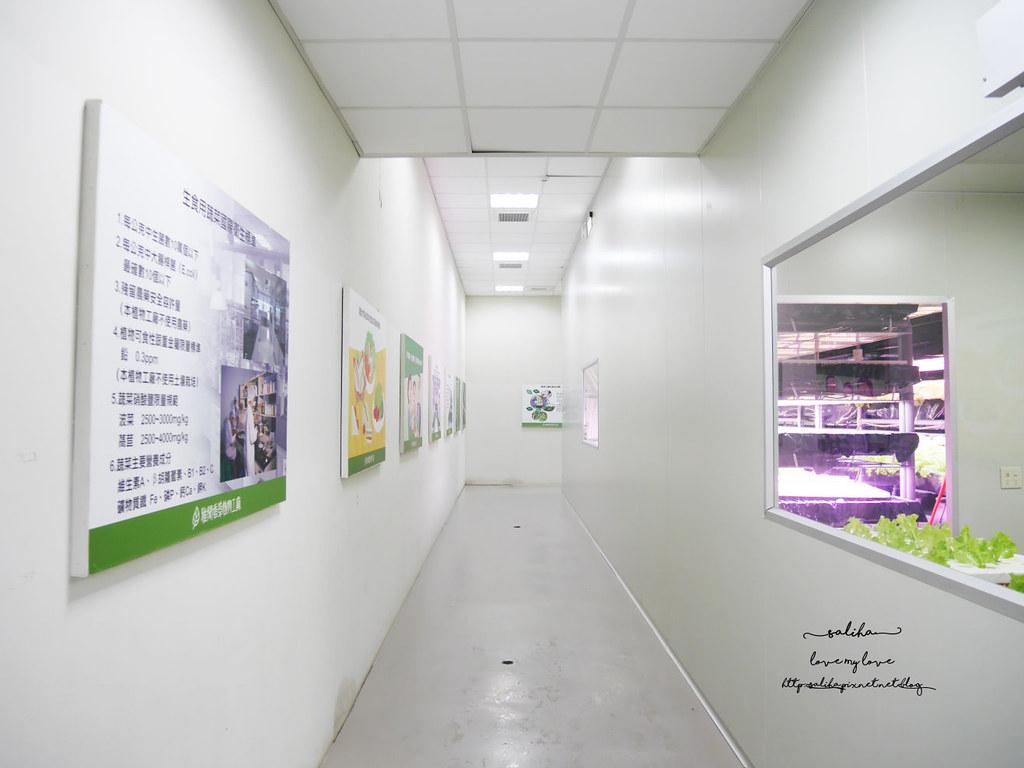 苗栗三義一日遊ig打卡景點推薦雅聞香草植物工廠免門票免費夢幻花園 (4)