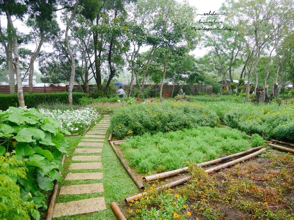 苗栗三義一日遊景點推薦雅聞香草植物工廠免門票夢幻玫瑰花園觀光工廠 (3)