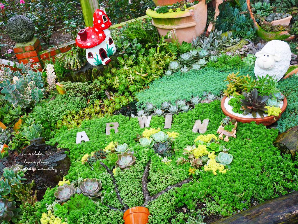 苗栗三義雅聞香草植物工廠好玩好拍親子景點夢幻花園 (4)
