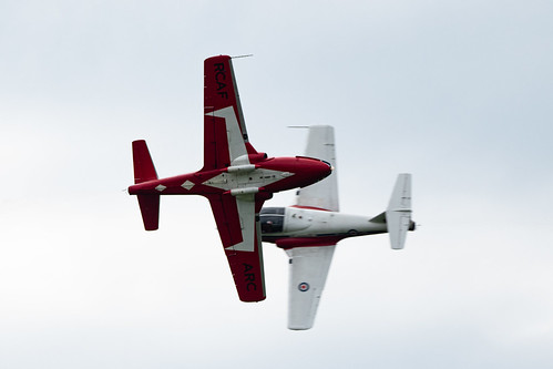 Snowbirds Cross-2755