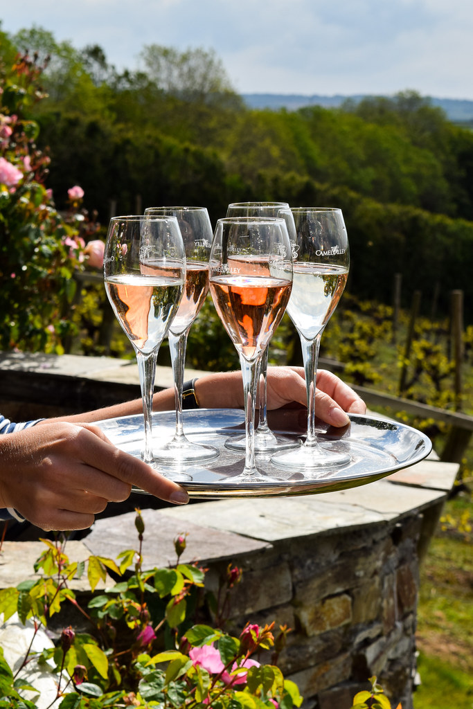 Wine Tasting at Camel Valley, Cornwall