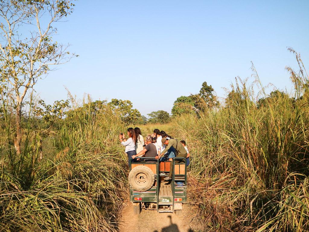 Jeep en Chitwan