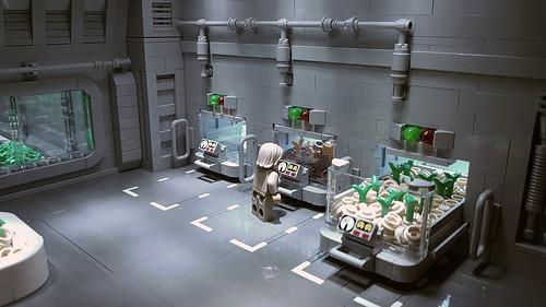 Hydroponics Research & Development Facility