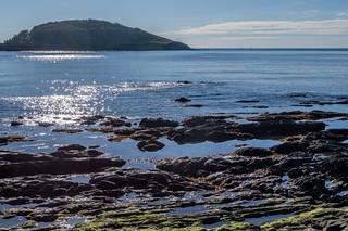 Hannfore to Looe island Cornwall