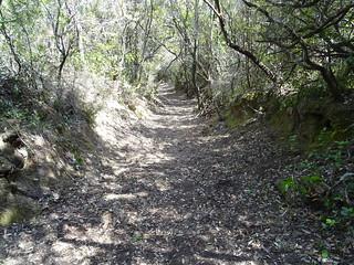 Le chemin de Luviu restauré : la partie restaurée des operati précédentes