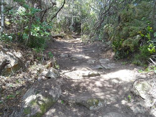 Le chemin après la carbunara :une partie dallée ?