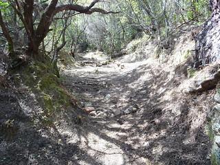 L'état du chemin dans la montée avec des marches aménagées