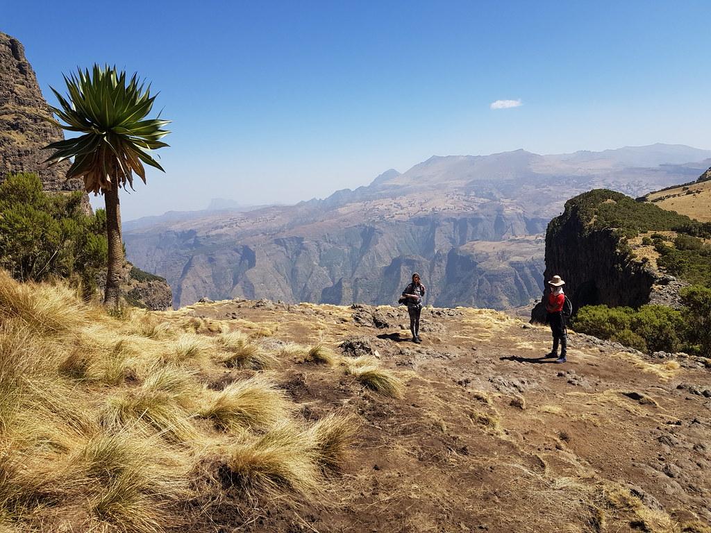 Góry Simien, trasa z Imet Gogo