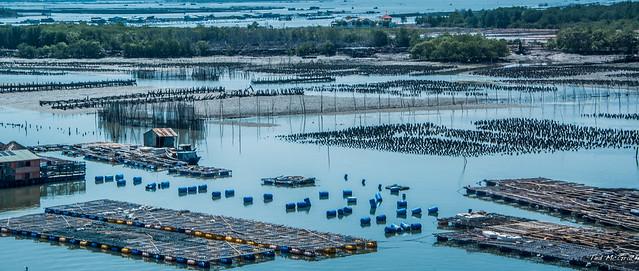 2019 - Vietnam - Phu My - Vung Tau - 27 of 31