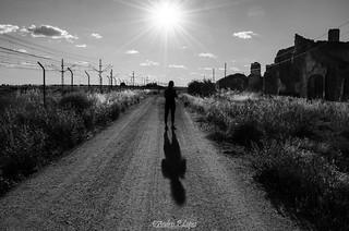 Caminando bajo el sol de La Mancha.