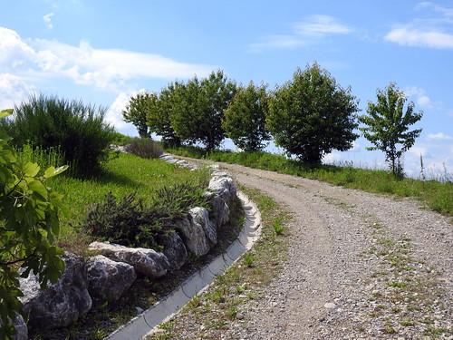 Cavenago di Brianza - Domeniche in collina 2019