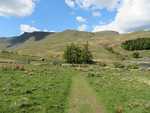 57 - A view back to Kidsty Pike and Kidsty Howes | by samashworth2