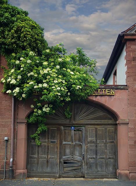 Altes Hoftor in Zellingen, Mainfranken