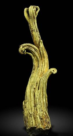 Ram's Horn Wire Gold Specimen