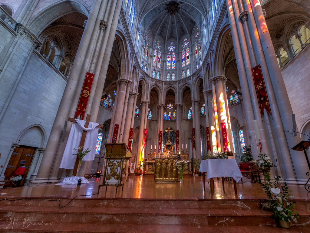 Notre Dame de Cholet 47938447578_70fbeab33a_b