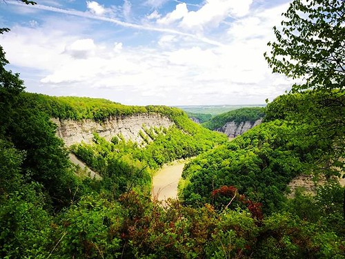 Letchworth canyon, looking north #letchworthstatepark #ilovenewyork #geneseeriver #nature #hiking #trees