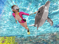 Swim like a Dolphin♥