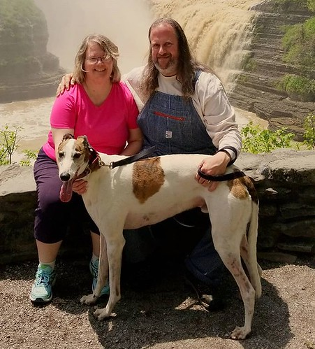 The Wife, the Dee-oh-gee, and me #Cane #dogsofinstagram #greyhound #greyhoundsofinstagram #letchworthstatepark #ilovenewyork #geneseeriver #nature #hiking #waterfall #overalls #dungarees #biboveralls #pointerbrand #overallsarelife #hickorystripe
