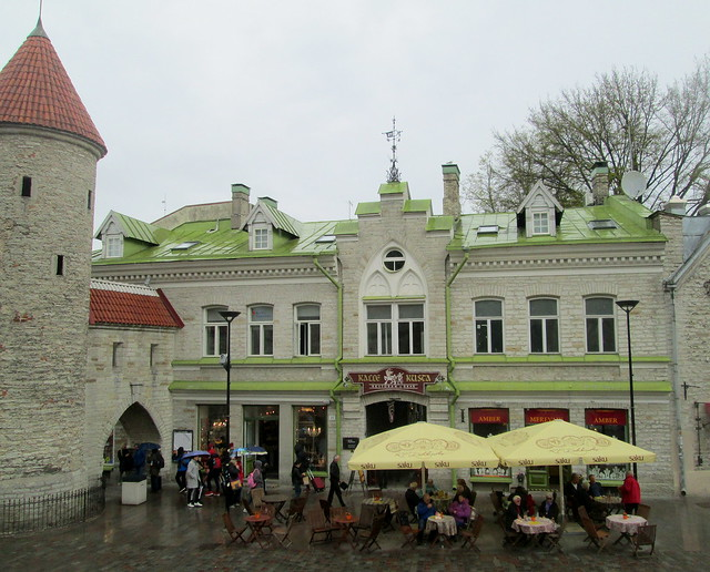 green roof, Tallinn, Estonia