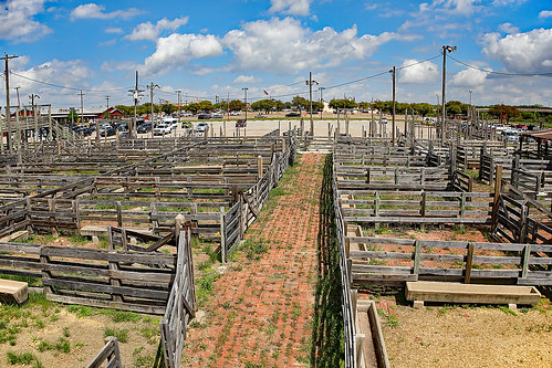 texas fortworth fortworthstockyards cattle stockpens stockyards wood nationalhistoricdistrict listed nationalregisterofhistoricplaces wyojones np
