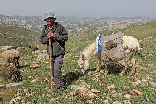 Day 3m -  a shepherd