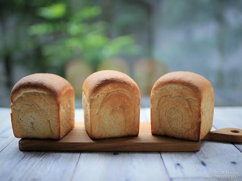 とぎ汁酵母の食パン 20190514-IMG_0150 (2)