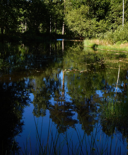 Pond at Tanum, a UNESCO World Heritage Rock Art Centre in Sweden
