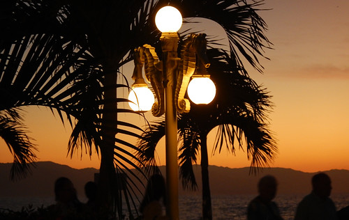 Globe lights hang from a seahorse light standard light up the palm trees at sunset in Puerto Vallarta, Mexico