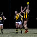tuggeranonghawks posted a photo:
