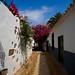 Telde un bonito rincón Gran Canaria