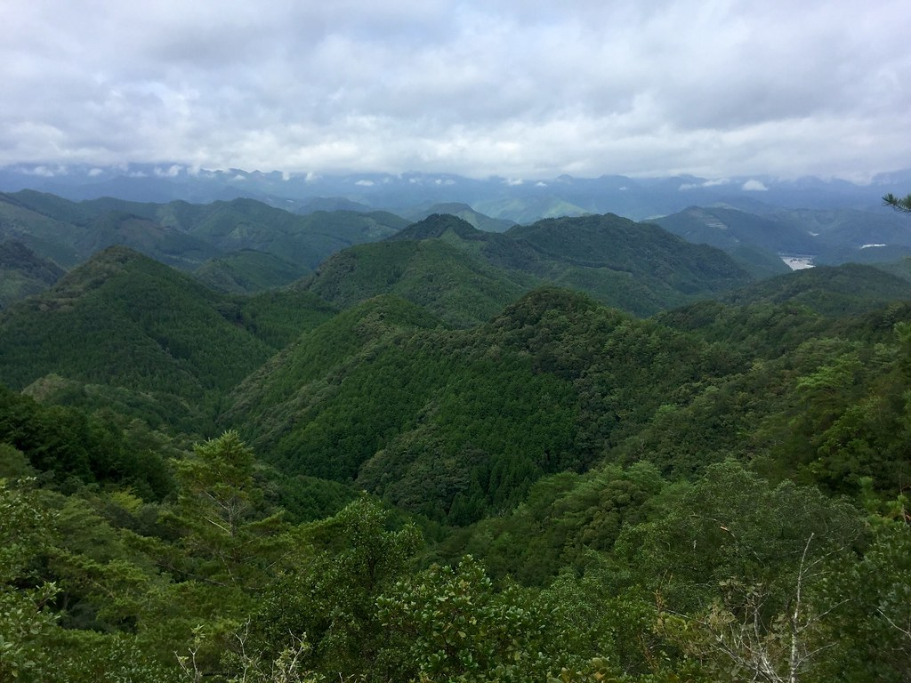 View of green from Kumano Kodo