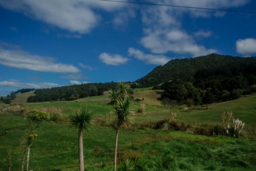 Новая Зеландия: Бей-оф-Айлендс Новая Зеландия: Бей-оф-Айлендс 47942338012 e45b077716 o