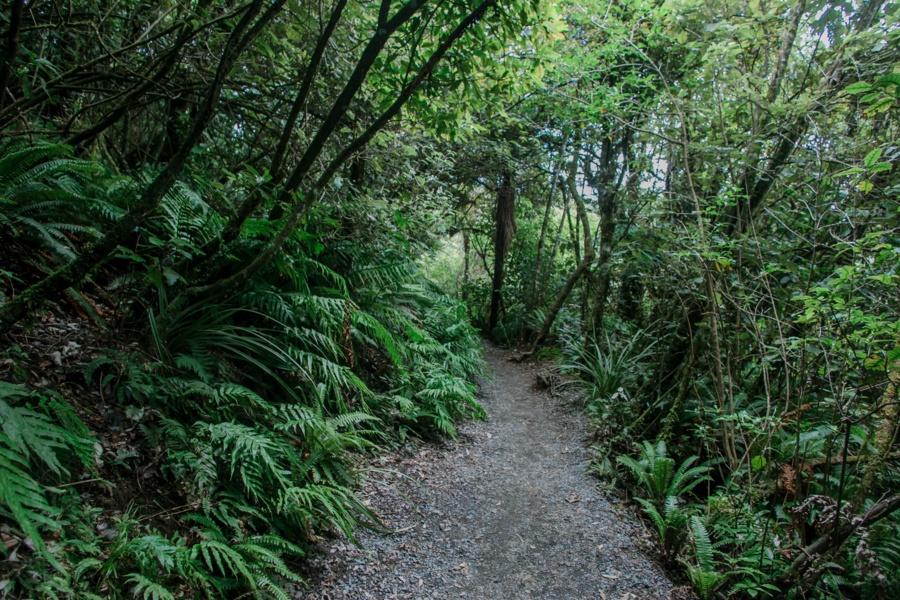 Тонгариро Новая Зеландия: национальный парк Тонгариро 47942380742 8d7c2ce2ee o