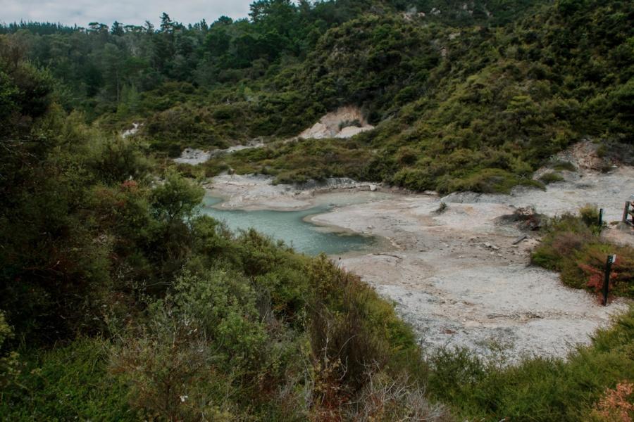 Новая Зеландия: Роторуа -