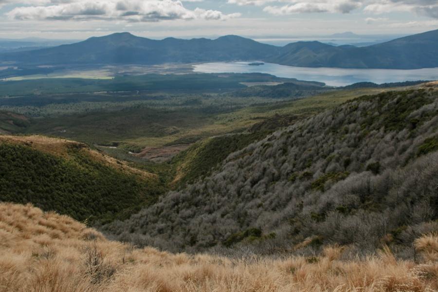 Тонгариро Новая Зеландия: национальный парк Тонгариро 47942397508 cedb54386d o