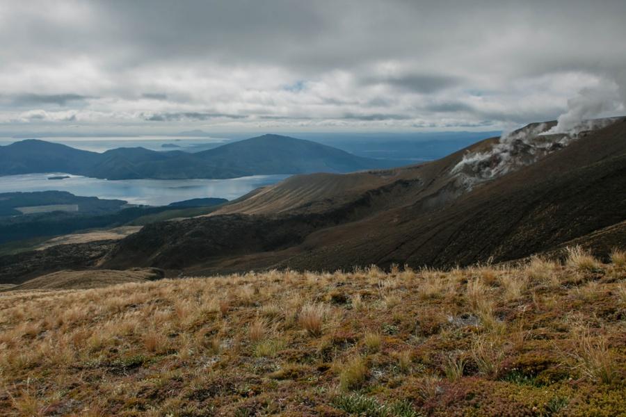 Тонгариро Новая Зеландия: национальный парк Тонгариро 47942397883 0a64d506f5 o