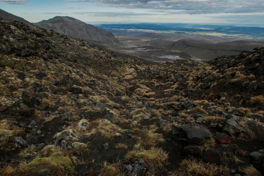Тонгариро Новая Зеландия: национальный парк Тонгариро 47942420506 c053282f50 o