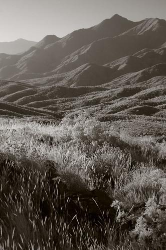 santarosamountains infrared pentax k5 smcpentax13535mm iridientdeveloper desert