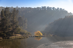 Cataract Gorge Morning-6.jpg