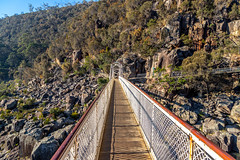 Cataract Gorge Morning-8.jpg