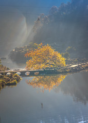 Cataract Gorge Morning-10.jpg