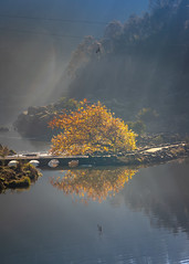 Cataract Gorge Morning-9.jpg