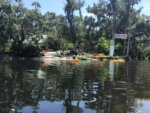The Paddling Center on Shingle Creek. From 5 Family-Friendly Eco Destinations in Kissimmee, Florida