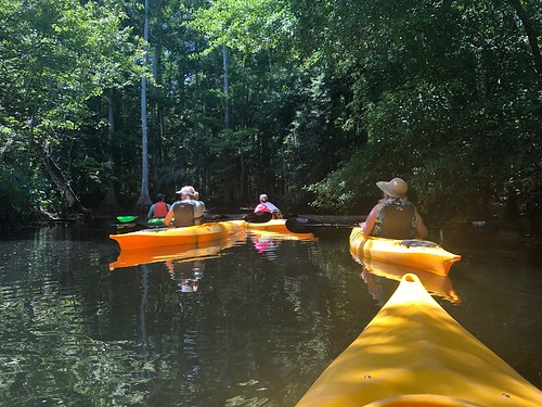 Kayaking Shingle Creek. From 5 Family-Friendly Eco Destinations in Kissimmee, Florida