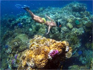Mar Rosso - I colori dell'acqua