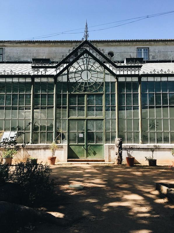 Jardim Botânico da Ajuda durante o Festival Jardins Abertos.