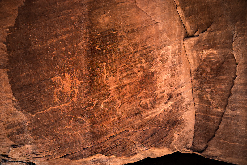 Corner Petroglyph Panel